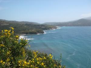 Wyspa Elba: Perła Wenus