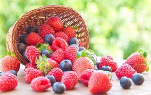 La nuova normativa in materia agroalimentare, un'eccellente opportunità per le imprese italiane