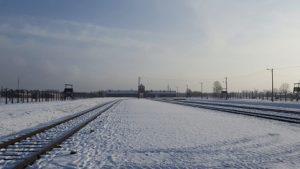Shoah: il Ministro Fedeli in visita a Auschwitz con 100 studenti