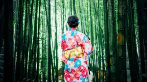Polonia Oggi: Mostra di kimono al museo Manggha di Cracovia