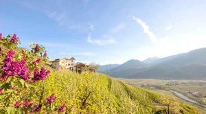 Polonia Oggi: L'associazione Gallo Rosso cerca di attrarre turisti polacchi in Sud Tirolo