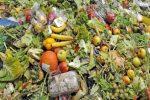 Polonia Oggi: Spreco di cibo, la Polonia tra i paesi meno virtuosi