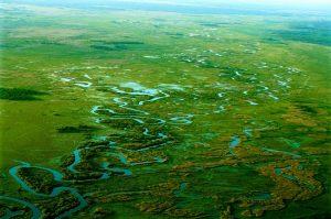 Biebrza tra paludi, torbiere e biodiversità