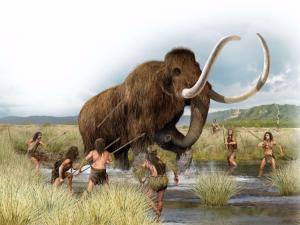 Da Cracovia la conferma che l'uomo cacciava i mammut