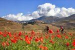 Umbria: zielone serce Włoch