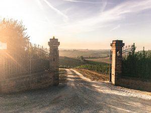 Lettere dalla Toscana, la pittura come compito